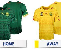 グループA カメルーン代表メンバー ワールドカップ2014 ブラジル大会