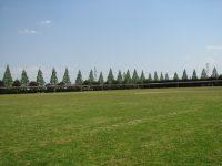 赤坂スポーツ公園多目的運動広場1