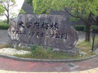 太宰府梅林アスレチックスポーツ公園3