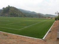 グローバルアリーナ人工芝フィールド3