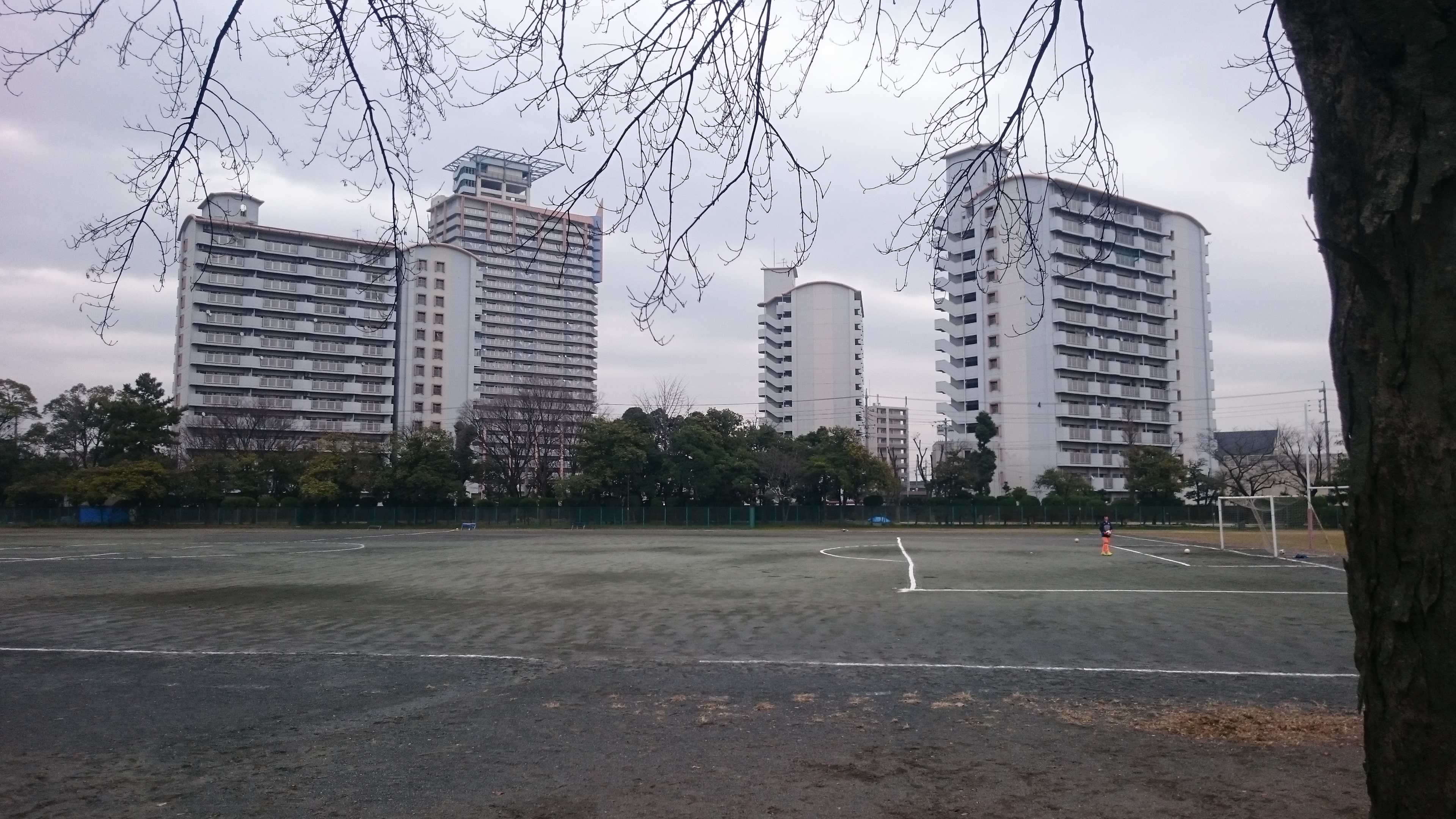 新横浜 公園 球技 場 アクセス