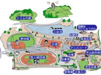 観音寺市総合運動公園陸上競技場3