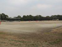 大井第一球技場1