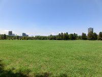 辰巳の森海浜公園ラグビー練習場1