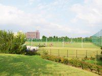 辰巳の森海浜公園ラグビー練習場3