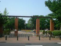 井草森公園運動場3