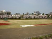 立川公園陸上競技場1
