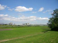 多摩川緑地公園多目的広場1