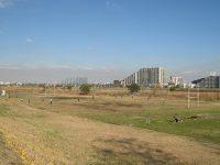 多摩川緑地公園多目的広場3