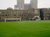 東京大学御殿下グラウンド2