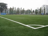 三菱養和会巣鴨スポーツセンターグラウンド2