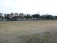 大黒ふ頭中央緑地運動広場2