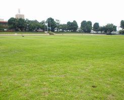 富士森公園陸上競技場