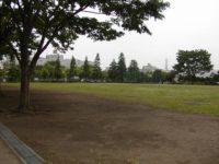 金井公園多目的運動広場2