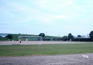 富士見市第2運動公園サッカー場 | FOOTBALL JUNKY