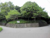 平畑運動公園サッカー場3