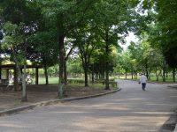 岸和田市中央公園スポーツ広場3