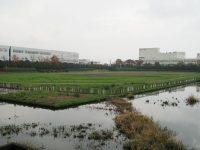 児玉工業団地遊水池内グラウンド2