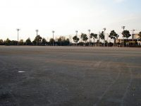 妻沼運動公園緑の広場1