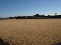 上里町宮多目的広場サッカー場2
