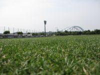 日本ハムグラウンド1