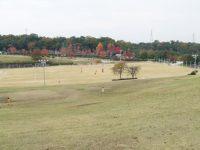 山城総合運動公園太陽が丘球技場A1