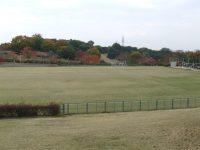 山城総合運動公園太陽が丘競技場B2