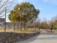垂水健康公園球技場3