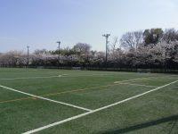 若泉運動公園多目的グラウンド1