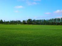 新潟聖籠スポーツセンターアルビレッジ天然芝ピッチ2