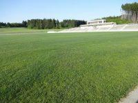 青森県フットボールセンター天然芝1