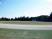 白山運動公園陸上競技場2