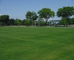 福島空港公園多目的運動広場