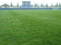 宮城県サッカー場Bグラウンド1