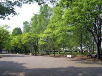 水沢公園陸上競技場3