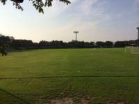 新潟県スポーツ公園多目的運動広場(北側)1