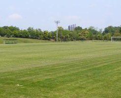 VIVAIOランド市原天然芝サッカー場