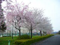 わかしゃち国体記念運動公園(上小口グラウンド)3