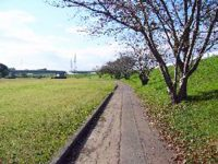 古川緑地サッカー場2