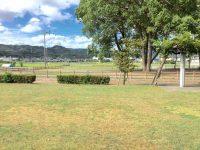 大崎公園グラウンド2