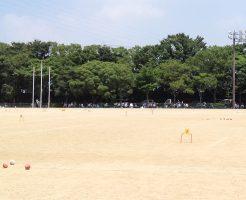緑が浜公園多目的広場